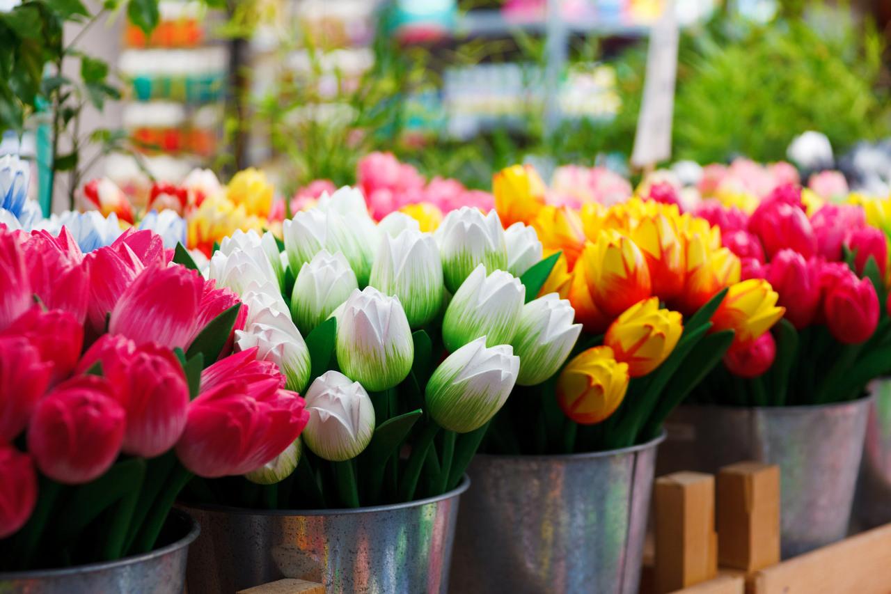 Mercado de las flores: tulipanes